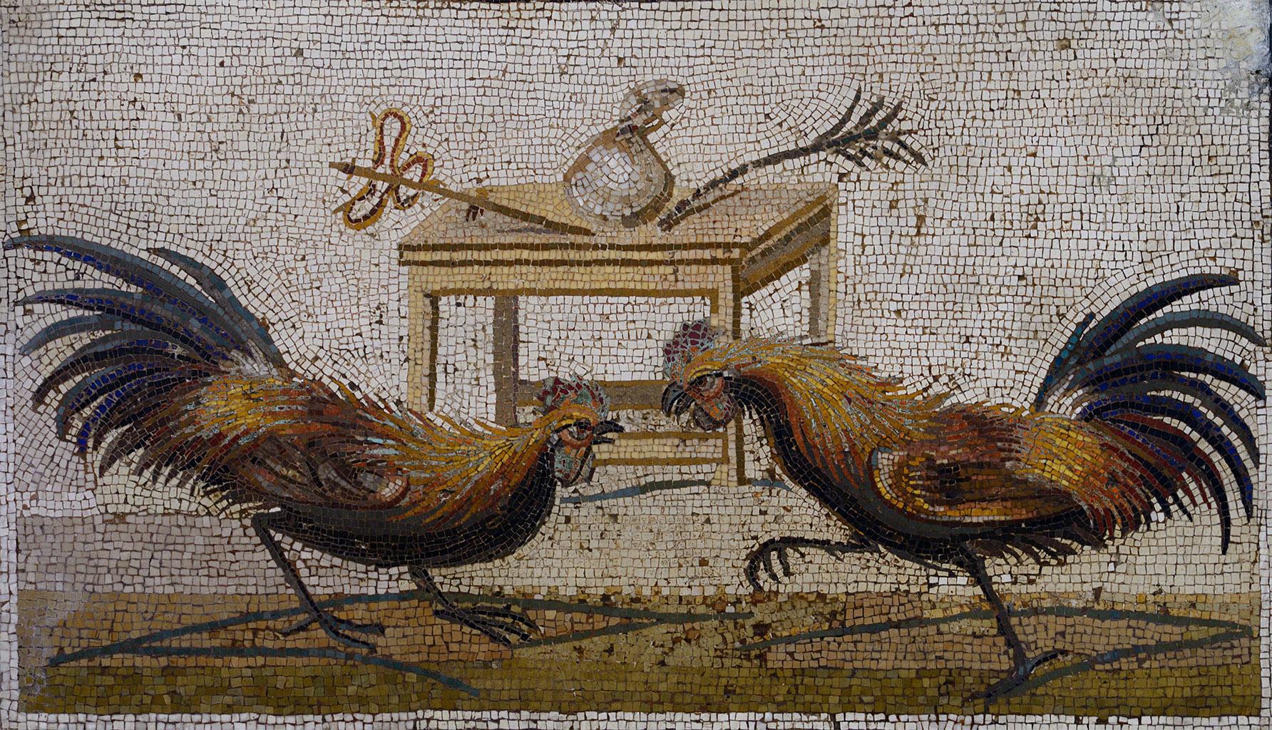 mosaic Pompeii cockfighting