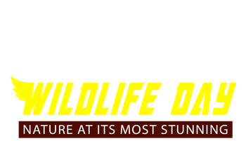 National Wildlife Day: Nature at its Most Stunning