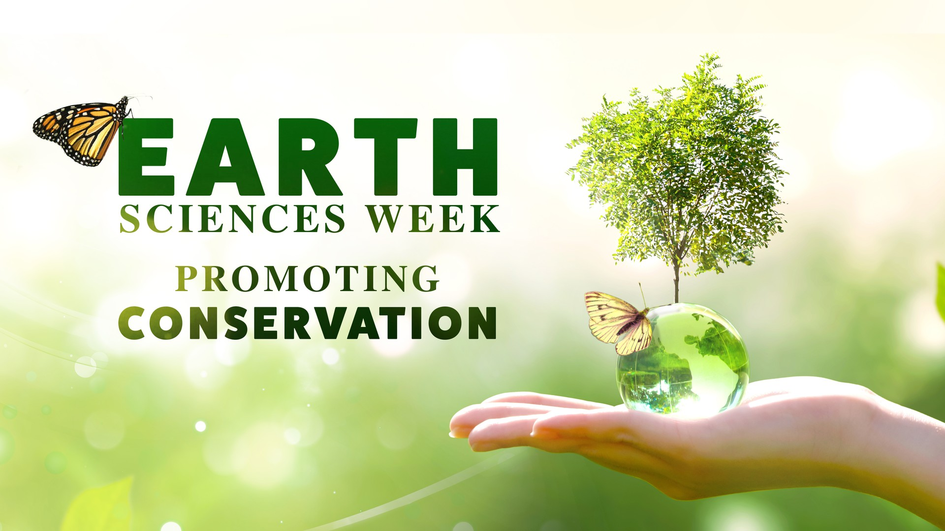 Earth Sciences Week: Promoting Conservation