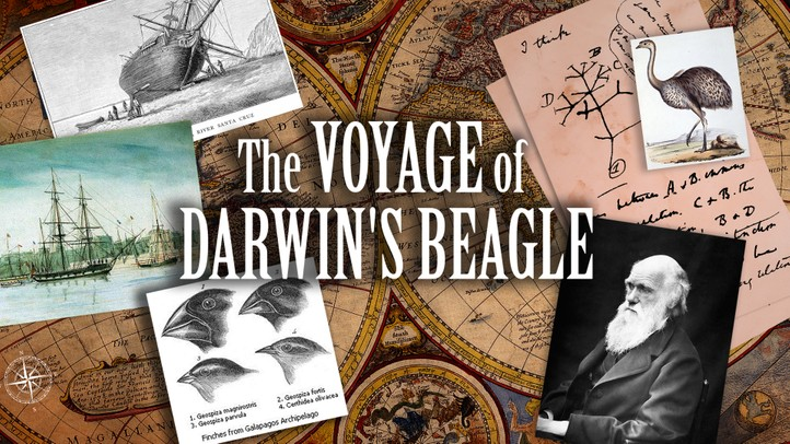 The Voyage of Darwin's Beagle: On the Future of Species