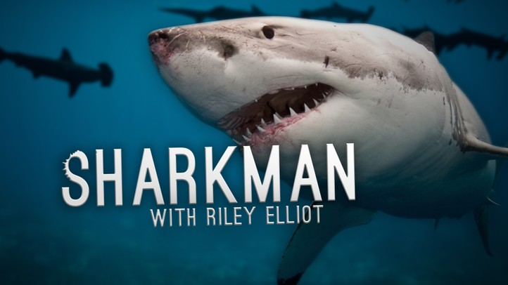 Shark Man with Riley Elliot