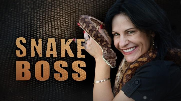 Snake Boss