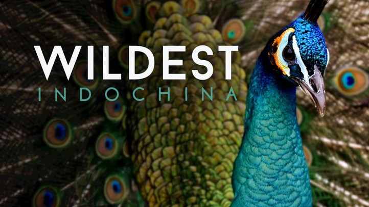 Wildest Indochina