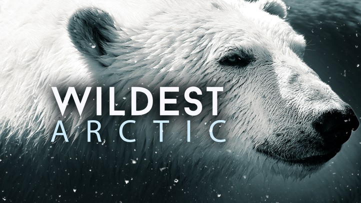 Wildest Arctic