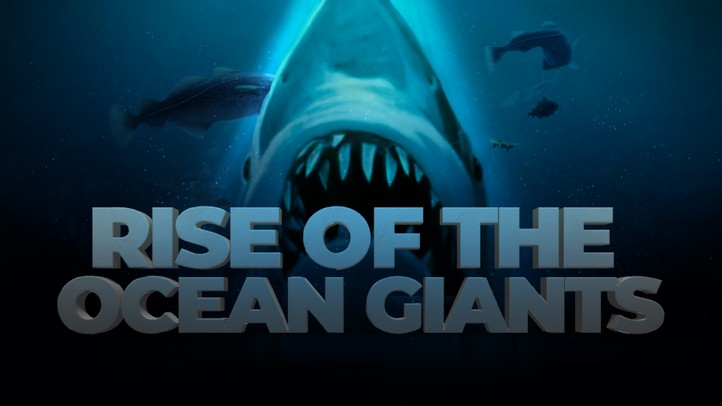 Rise of the Ocean Giants