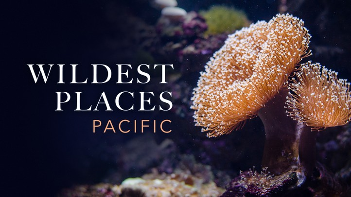 Wildest Places - Pacific
