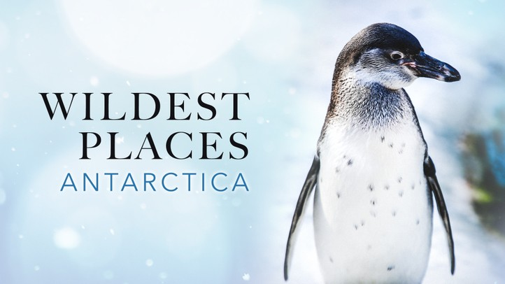 Wildest Places - Antarctic