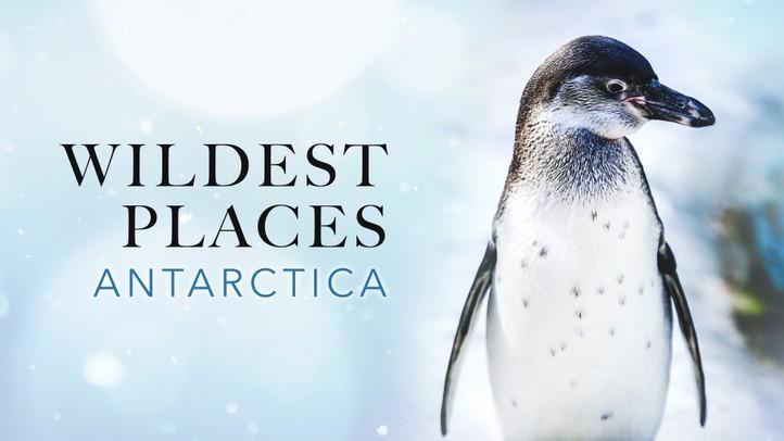Wildest Places - Antarctic
