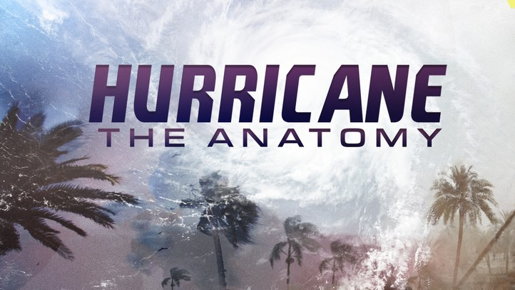 Hurricane: The Anatomy