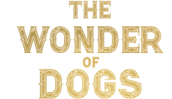 The Wonder of Dogs 4K