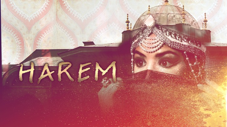Harem: Pleasure, Politics, and Power