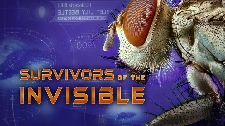 Survivors of the Invisible