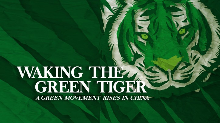 Waking the Green Tiger: A Green Movement Rises