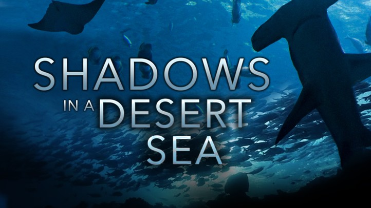Shadows in a Desert Sea