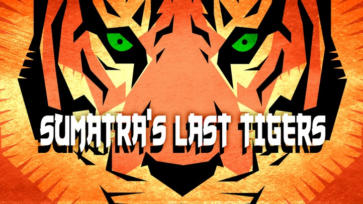 Sumatra's Last Tigers