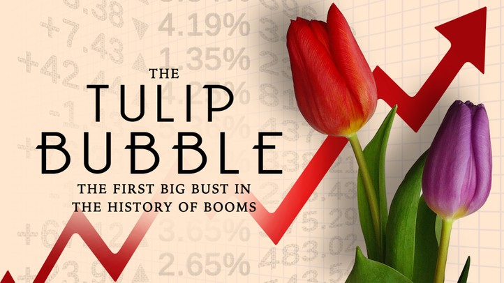 The Tulip Bubble