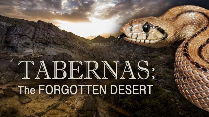 Tabernas: Forgotten Desert