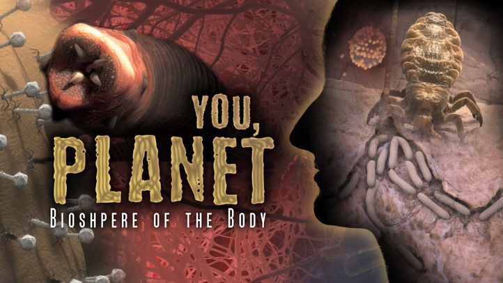 You, Planet: Biosphere of the Body