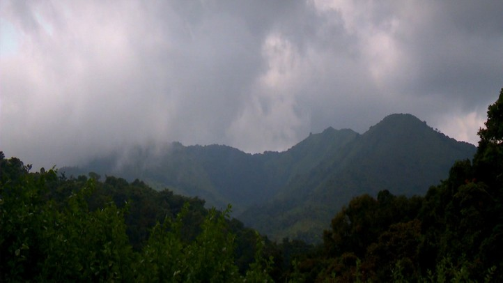 Western Ghats: Monsoon Mountains