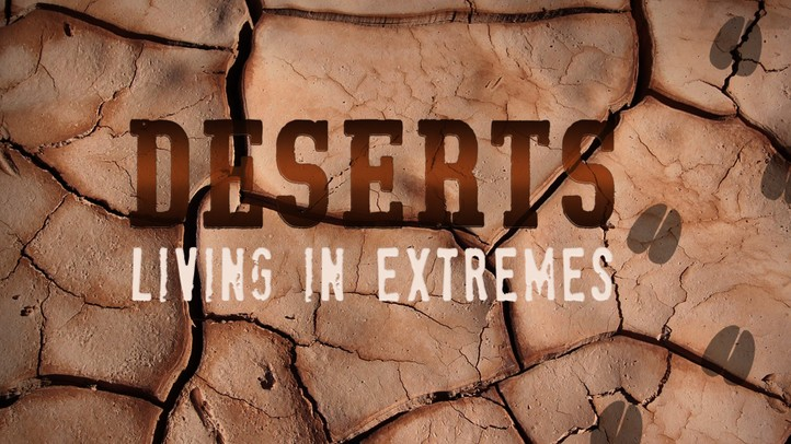 Deserts: Living in Extremes