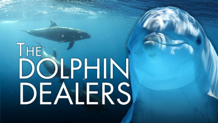 The Dolphin Dealer