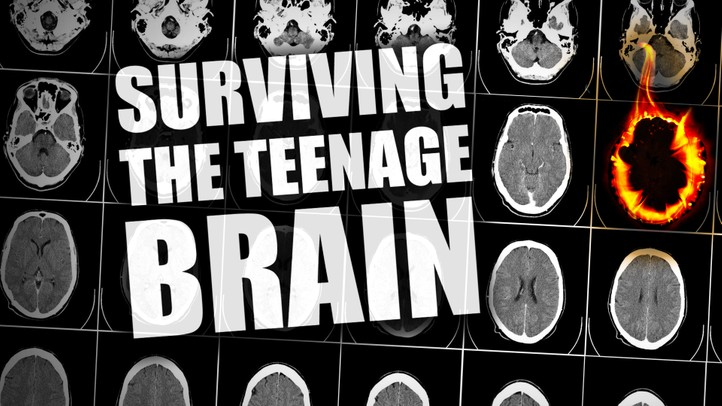 Surviving the Teenage Brain
