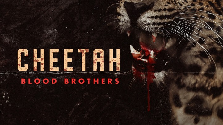 Cheetah Blood Brothers