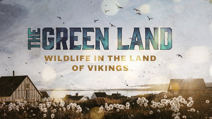The Green Land: Wildlife in the Land of Vikings