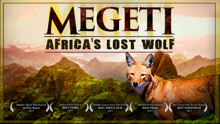 Megeti: Africa's Lost Wolf 4K