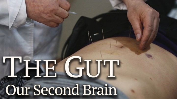 The Gut: Our Second Brain - Trailer