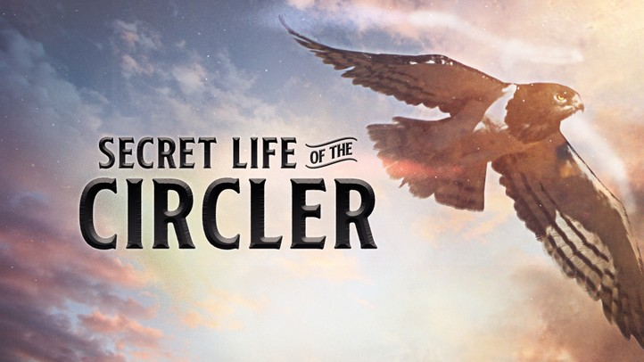 Secret Life of the Circler