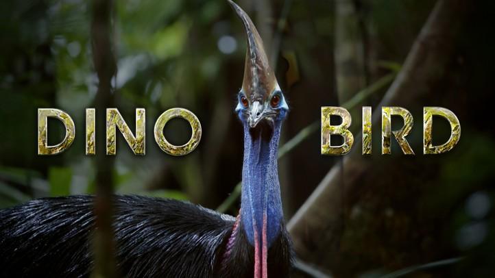 Dino Bird - 4K