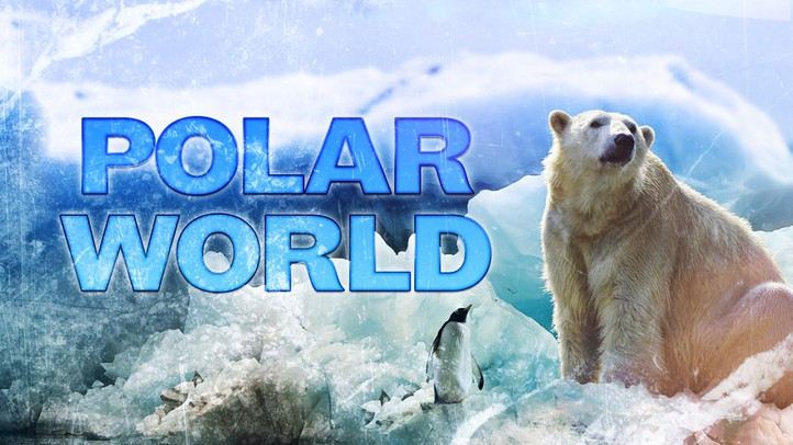 Polar World