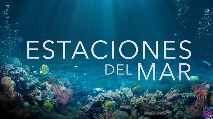 Estaciones del Mar