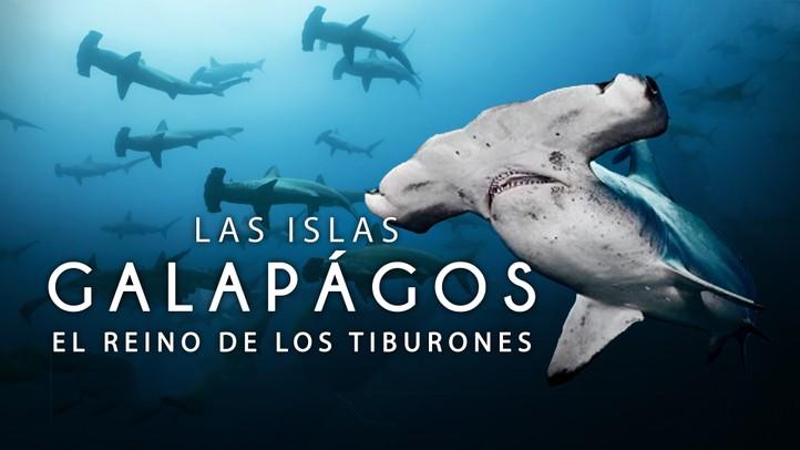 Las Islas Galápagos: El Reino de los Tiburones