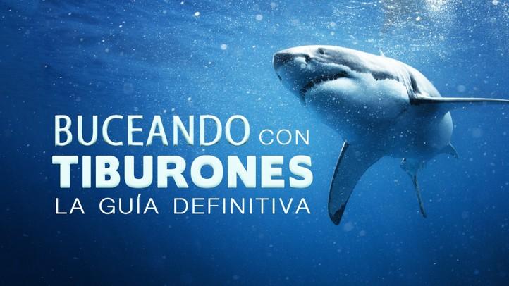 Buceando con Tiburones: la Guía Definitiva
