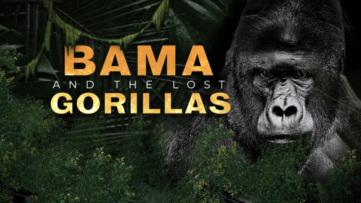 Bama and the Lost Gorillas