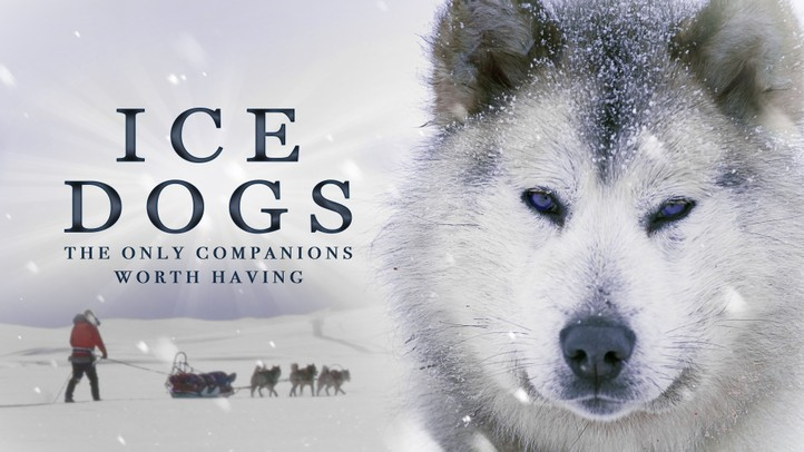 Ice Dogs: The Only Companions Worth Having 4K