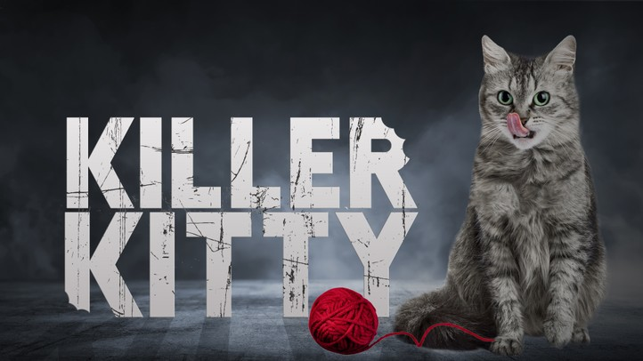 Killer Kitty