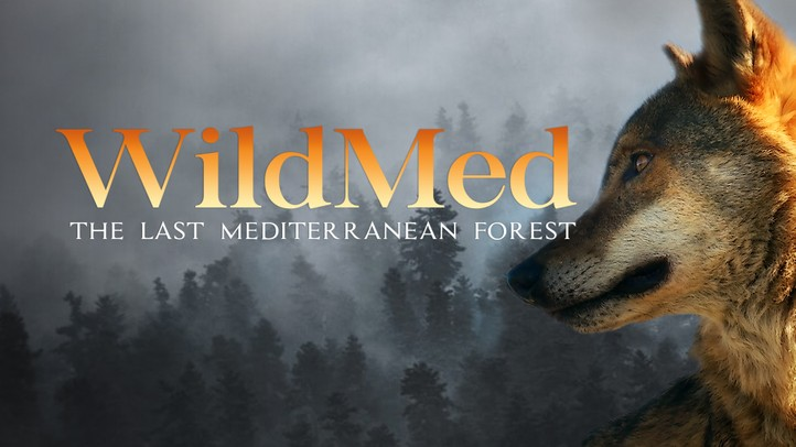 WildMed: The Last Mediterranean Forest