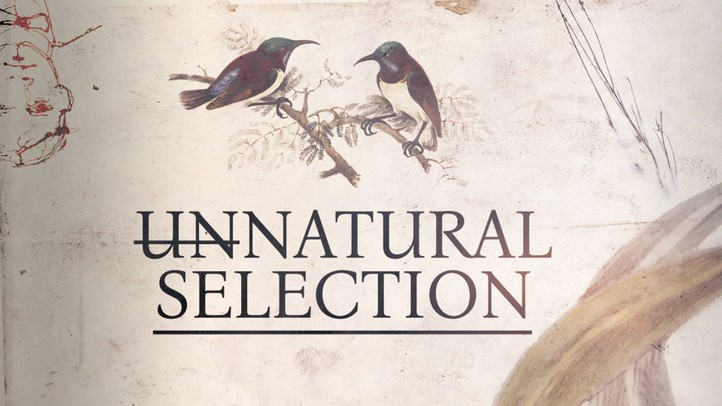 Unnatural Selection 4K