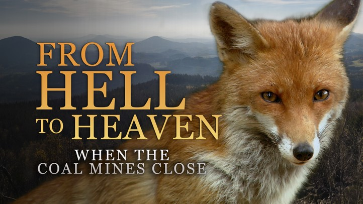 From Hell to Heaven: When the Coal Mines Close