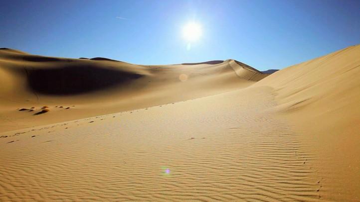 The Great Desert Race