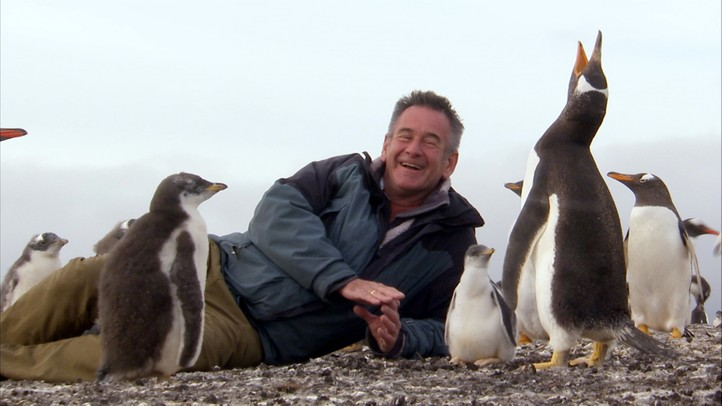 An Antarctic Voyage