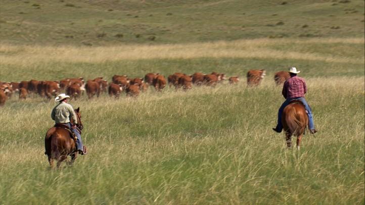 Nebraska: Lincoln to Bowing Ranch